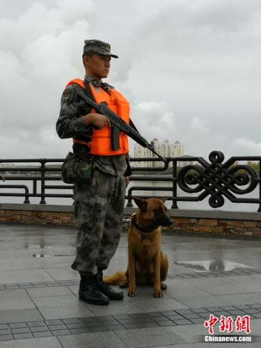 官兵牽著軍犬巡邏。袁秀月 攝