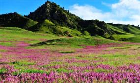《山海經》青海彩色的草原